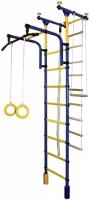 Детский спортивный комплекс Формула здоровья Фаворит-1С Плюс (синий/желтый) -