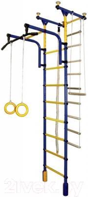Детский спортивный комплекс Формула здоровья Фаворит-1С Плюс (синий/желтый)