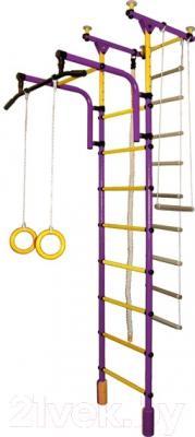 Детский спортивный комплекс Формула здоровья Фаворит-1С Плюс (фиолетовый/желтый)