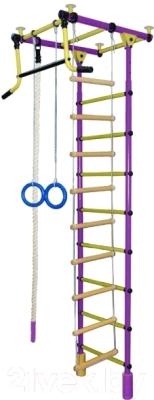 Детский спортивный комплекс Формула здоровья Уралец-2А Плюс (фиолетовый/желтый)