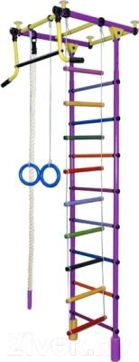 Детский спортивный комплекс Формула здоровья Уралец-2А Плюс (фиолетовый/радуга)