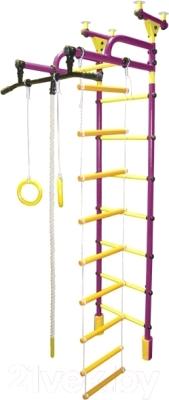 Детский спортивный комплекс Формула здоровья Жирафик-1А Плюс Универсальный (фиолетовый/желтый)