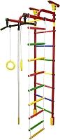 Детский спортивный комплекс Формула здоровья Жирафик-1А Плюс Универсальный (красный/радуга) -