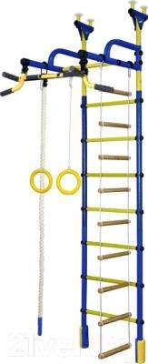 Детский спортивный комплекс Формула здоровья Жирафик-4А Плюс (синий/желтый)