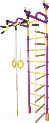 Детский спортивный комплекс Формула здоровья Жирафик-4А Плюс (фиолетовый/желтый)