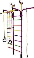 Детский спортивный комплекс Формула здоровья Гимнаст 1-Е Плюс (фиолетовый/радуга) -