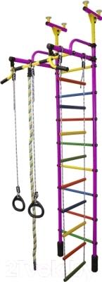 Детский спортивный комплекс Формула здоровья Жирафик-2А Плюс (фиолетовый/радуга)
