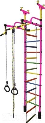 Детский спортивный комплекс Формула здоровья Жирафик-2А Плюс (розовый/радуга)