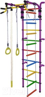 Детский спортивный комплекс Формула здоровья Орленок-4А Плюс (фиолетовый/радуга)