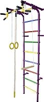 Детский спортивный комплекс Формула здоровья Непоседа-4В Плюс (фиолетовый/радуга) -