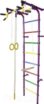 Детский спортивный комплекс Формула здоровья Непоседа-4В Плюс (фиолетовый/радуга)