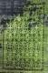 Ковер Flora Leo (200x290, черный/зеленый) -