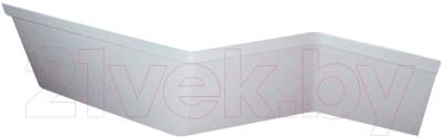 Экран для ванны Ravak BeHappy 160 L (CZ13100A00)