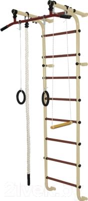 Детский спортивный комплекс Формула здоровья Мечта-1В Плюс (бежевый/коричневый)