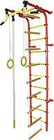 Детский спортивный комплекс Формула здоровья Забияка-2А Плюс (красный/желтый) -