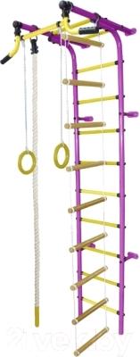 Детский спортивный комплекс Формула здоровья Забияка-2А Плюс (фиолетовый/желтый)