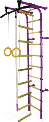 Детский спортивный комплекс Формула здоровья Забияка-1А Плюс (фиолетовый/желтый)