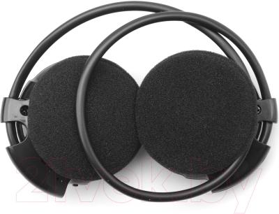 Наушники-гарнитура Harper HB-100 (черный/серебристый)