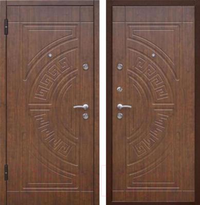 уличные металлические двери 205 96