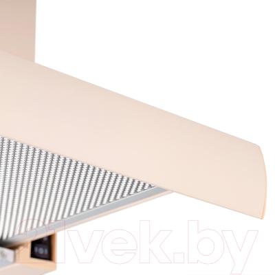Вытяжка телескопическая Pyramida TL 50 (1100) IV