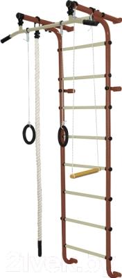 Детский спортивный комплекс Формула здоровья Мечта-1В Плюс  (коричневый/бежевый)