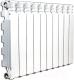 Радиатор алюминиевый Fondital Exclusivo B4 350/100 (V680014) -