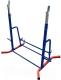 Подставка для штанги Формула здоровья Дельта-02 (красный/синий) -