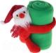 Плед Luazon Этелька Санта в колпачке 1034237 (зеленый) -