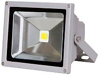 Прожектор JAZZway PFL 6500K (1001306) -
