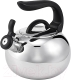 Чайник со свистком Perfecto Linea Focus 52-027018 (серебристый металлик) -