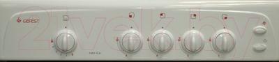Кухонная плита Gefest 1200 С6