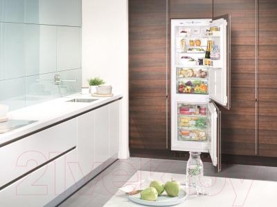 Холодильник с морозильником Liebherr ICBN 3314 - пример использования в интерьере