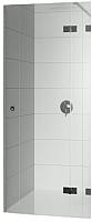 Душевая дверь Riho GA0050202 Artic R 90 -