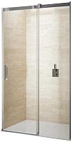 Душевая дверь Riho Ocean GU0202100 (раздвижная 120) -
