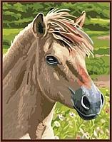 Картина по номерам Picasso Лошадь №3 (PC3040011) -