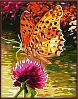 Картина по номерам Picasso Оранжевая бабочка (PC3040014) -