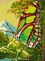 Картина по номерам Picasso Зеленая бабочка (PC3040016) -