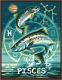 Картина по номерам Picasso Рыбы (PC4050052) -