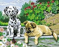 Картина по номерам Picasso Щенячье любопытство (PC4050063) -