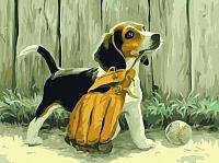 Картина по номерам Picasso Щенок бейсболист (PC4050089) -