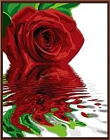Картина по номерам Picasso Красная роза на цветном холсте  (PP4050039) -