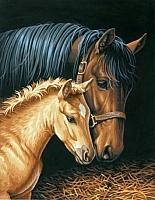 Картина по номерам Truehearted Материнская забота (HB4050345) -