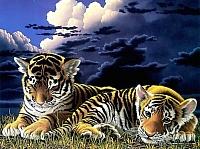 Картина по номерам Truehearted Тигрята перед сном (HB4050026) -