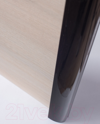 Шкаф Евва 18 VHG.02 / АЭП ШК.3 03 (шамони/венге глянец)