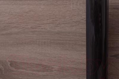 Шкаф Евва 16 TTG.02 / АЭП ШК.2 01 (трюфель/венге глянец)