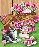 Картина по номерам Truehearted Котята и цветы (HB5060007) -
