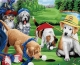 Картина по номерам Truehearted Игра в гольф (HB5060011) -