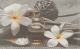 Декоративная плитка Cersanit Olivia Spa 2 (250x400) -
