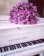 Набор алмазной вышивки Гранни Розы на рояле (Ag 5815) -