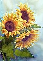 Набор алмазной вышивки Гранни Солнечные цветы (Ag 877) -